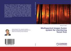 Bookcover of Multispectral images fusion system for monitoring forest fires