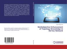 Multiobjective Enhancement of Topology Knowledge in Ad hoc Network的封面