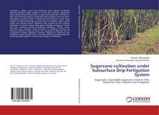 Обложка Sugarcane cultivation under Subsurface Drip Fertigation System