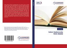 İslâm Kelâmında YEİS İMANI kitap kapağı
