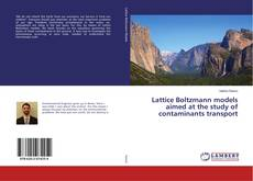 Buchcover von Lattice Boltzmann models aimed at the study of contaminants transport