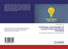 Bookcover of Challenges and Strength of Current Industrial Energy Efficiency