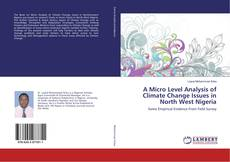 Bookcover of A Micro Level Analysis of Climate Change Issues in North West Nigeria