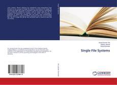 Обложка Single File Systems