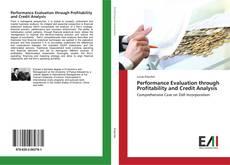 Borítókép a  Performance Evaluation through Profitability and Credit Analysis - hoz