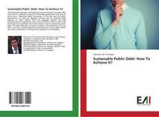 Copertina di Sustanable Public Debt: How To Achieve It?