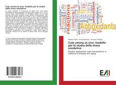 Bookcover of Cute umana ex vivo: modello per lo studio dello stress ossidativo