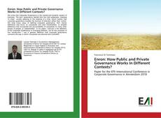 Copertina di Enron: How Public and Private Governance Works In Different Contexts?
