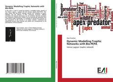 Buchcover von Dynamic Modelling Trophic Networks with Bio-PEPA