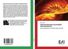 Обложка Sperimentazione di prodotti nanostrutturati