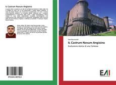 Copertina di IL Castrum Novum Angioino