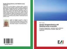 Buchcover von Analisi biogeochimica del Mediterraneo orientale