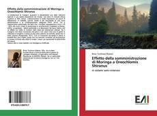 Обложка Effetto della somministrazione di Moringa a Oreochlomis Shiranus