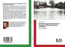 Flood Damage Assessment in Support of Risk Mitigation Strategies kitap kapağı