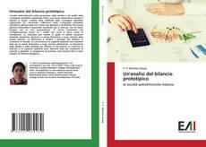 Un'analisi del bilancio prototipico kitap kapağı