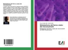Capa do livro de Metabolismo del ferro e stato dei micronutrienti