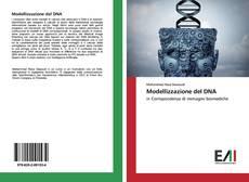 Modellizzazione del DNA kitap kapağı