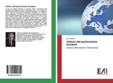 Vettore del partenariato europeo kitap kapağı