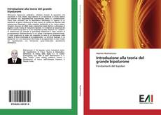 Buchcover von Introduzione alla teoria del grande bipolarone
