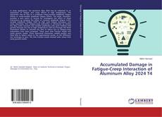 Bookcover of Accumulated Damage in Fatigue-Creep Interaction of Aluminum Alloy 2024 T4