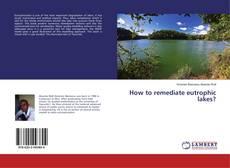 Couverture de How to remediate eutrophic lakes?