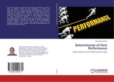 Couverture de Determinants of Firm Performance