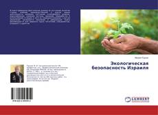 Bookcover of Экологическая безопасность Израиля