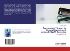 Bookcover of Reassessing Efficiency in Human Development among ECOWAS Countries
