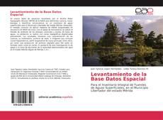 Levantamiento de la Base Datos Espacial kitap kapağı