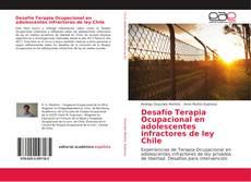 Portada del libro de Desafío Terapia Ocupacional en adolescentes infractores de ley Chile