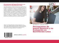 Portada del libro de Percepciones de buena Docencia y su Evaluación en Bachillerato Linea