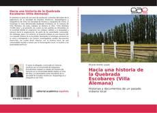 Buchcover von Hacia una historia de la Quebrada Escobares (Villa Alemana)