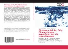 Couverture de Dinámica del As, Cd y Pb en el agua superficial del río Jequetepeque