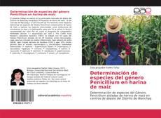Copertina di Determinación de especies del género Penicillium en harina de maíz