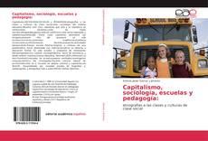 Capitalismo, sociología, escuelas y pedagogía: kitap kapağı