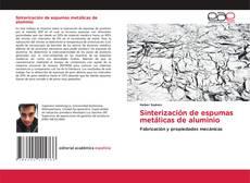Bookcover of Sinterización de espumas metálicas de aluminio