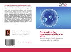 Bookcover of Formación de espermatozoides in vitro