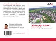 Bookcover of Análisis del Impacto Ambiental