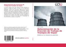 Buchcover von Determinación de la Fracción de Trabajo de Trampas de Vapor