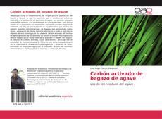 Обложка Carbón activado de bagazo de agave