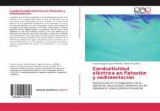 Buchcover von Conductividad eléctrica en flotación y sedimentación