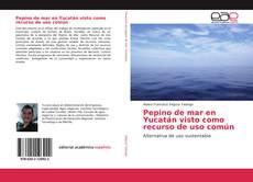 Bookcover of Pepino de mar en Yucatán visto como recurso de uso común