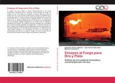 Bookcover of Ensayes al Fuego para Oro y Plata