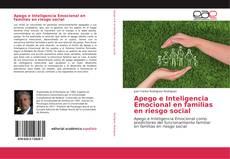 Обложка Apego e Inteligencia Emocional en familias en riesgo social