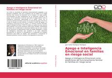 Buchcover von Apego e Inteligencia Emocional en familias en riesgo social