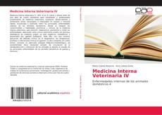 Copertina di Medicina Interna Veterinaria IV