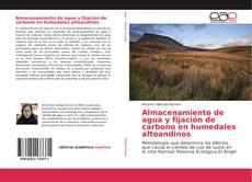 Bookcover of Almacenamiento de agua y fijación de carbono en humedales altoandinos