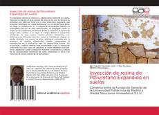 Bookcover of Inyección de resina de Poliuretano Expandido en suelos