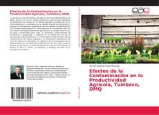 Обложка Efectos de la Contaminación en la Productividad Agrícola, Tumbaco, DMQ