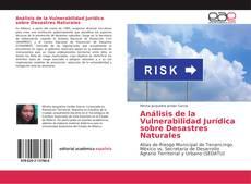 Portada del libro de Análisis de la Vulnerabilidad Jurídica sobre Desastres Naturales